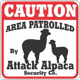 Attack Alpaca