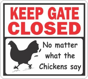 Gate Closed Chickens