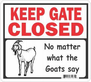 Gate Closed Goats