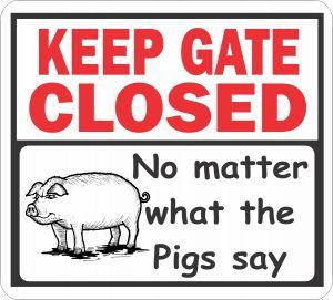Gate Closed Pigs